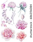 watercolor set of flowers ... | Shutterstock . vector #686356084