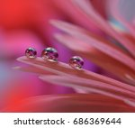abstract macro photo with water ... | Shutterstock . vector #686369644