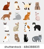 cat breeds cute pet animal set... | Shutterstock .eps vector #686388835
