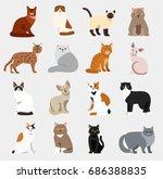 Stock vector cat breeds cute pet animal set vector illustration animals icons cartoon different cats 686388835