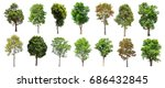 collection of isolated trees on ... | Shutterstock . vector #686432845