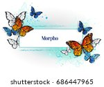 Stock vector rectangular banner with blue butterfly morpho and orange monarch butterfly on a white background 686447965