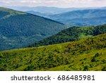forest on a hill side meadow in ... | Shutterstock . vector #686485981