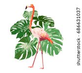pink flamingo with green... | Shutterstock .eps vector #686631037