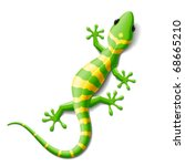 animal,body,cartoon,color,dragon,eye,gecko,green,iguana,illustration,isolated,lizard,moving,nature,one