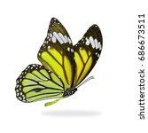 beautiful yellow monarch... | Shutterstock . vector #686673511