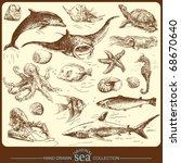 big sea collection   original... | Shutterstock .eps vector #68670640