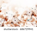 flowers background with amazing ... | Shutterstock . vector #686729941