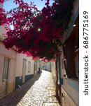 narrow alley with pink... | Shutterstock . vector #686775169