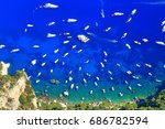 Aerial View To White Boats Near ...