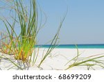 Sea Grass On White Sand In...