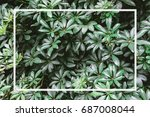 green leaves background with... | Shutterstock . vector #687008044