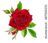 flower composition. a bud of a... | Shutterstock . vector #687020251