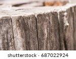 stump   Shutterstock . vector #687022924