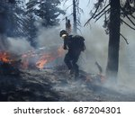 firemen in the fire forest | Shutterstock . vector #687204301