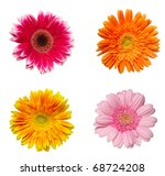 collection of  daisy flower on... | Shutterstock . vector #68724208