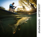 fishing. fisherman and pike ... | Shutterstock . vector #687285037