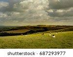 white horse  wiltshire uk | Shutterstock . vector #687293977