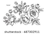 rose flowers by hand drawing... | Shutterstock .eps vector #687302911