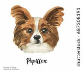 portrait cute dog isolated on... | Shutterstock . vector #687308191