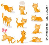 Cute Cat In Various Poses....