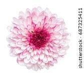 Top View Of Pink Chrysanthemum...