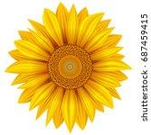 yellow sunflower isolated on... | Shutterstock .eps vector #687459415