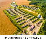aerial view to pig farm in... | Shutterstock . vector #687481534