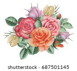 hand painted watercolor... | Shutterstock . vector #687501145