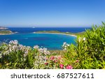 Panorama Of The Oleanders In...