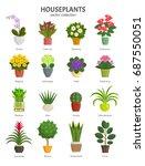 houseplants collection. vector... | Shutterstock .eps vector #687550051