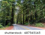 Road Going Through A Redwood...