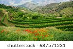 vineyards are on a hills  douro ... | Shutterstock . vector #687571231