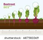 vector illustration in flat... | Shutterstock .eps vector #687583369