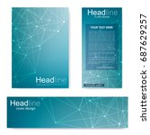 set flyer  brochure size a4... | Shutterstock .eps vector #687629257
