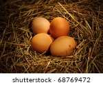 Two Chicken Eggs In The Nest