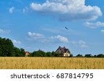 home in green field with blue... | Shutterstock . vector #687814795