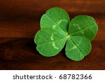 Freshly picked four leaf clover on wood background.  Macro with shallow dof. - stock photo