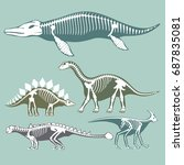 dinosaurs skeletons silhouettes ... | Shutterstock .eps vector #687835081