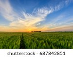 scene of sunset on the field... | Shutterstock . vector #687842851