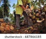 a plantation farmer extracts...   Shutterstock . vector #687866185