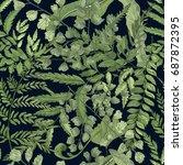 fern green foliage on black... | Shutterstock .eps vector #687872395