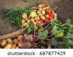 crate of organic fresh... | Shutterstock . vector #687877429