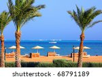 palm trees and tropical beach... | Shutterstock . vector #68791189