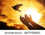 man praying and free bird... | Shutterstock . vector #687958681