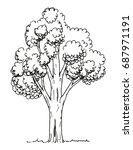 tree hand drawn | Shutterstock .eps vector #687971191
