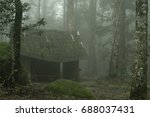 house in the deep forest in the ... | Shutterstock . vector #688037431