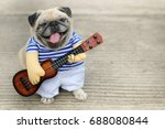 Stock photo indy musician guitarist pug dog funny pug dog wearing indy musician costume with ukulele 688080844