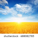 wheat field and sun in the sky  | Shutterstock . vector #688082785