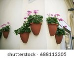 Pink Flowers In The Wall